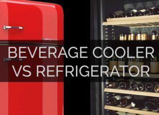 Fridge or Cooler
